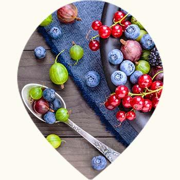 Fruits riches en anti oxydants