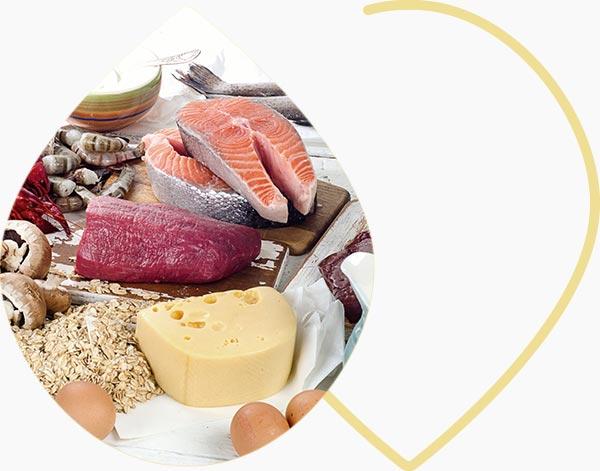 Sources de vitamine B12